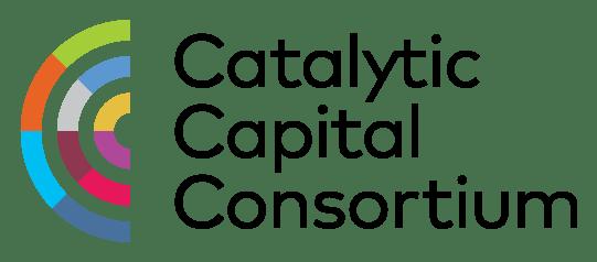 Catalytic Capital